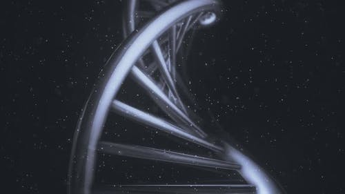 Isolated DNA Helix In A Macro Close-Up View