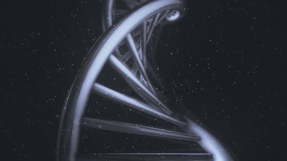 Thumbnail for Isolated DNA Helix In A Macro Close-Up View