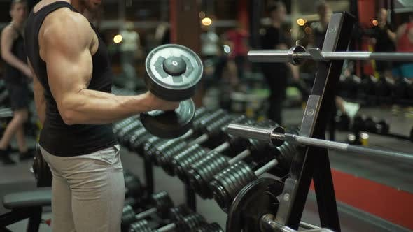 Thumbnail for Muscleman Lifting Heavy Dumbbells Alternatively in the Gym, Bodybuilding