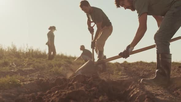 Thumbnail for Team of Gardeners Working in Field