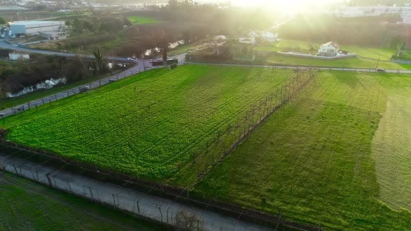 Thumbnail for Industrial Farming Aerial Video Footage