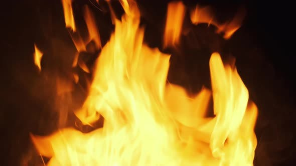 Thumbnail for Fire Flames on a Black Background. Bonfire Burning at Night. Slow Motion
