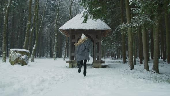 Thumbnail for Running Through a Wooden Gate