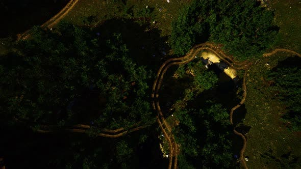 Aerial View of the Road Through the Forest
