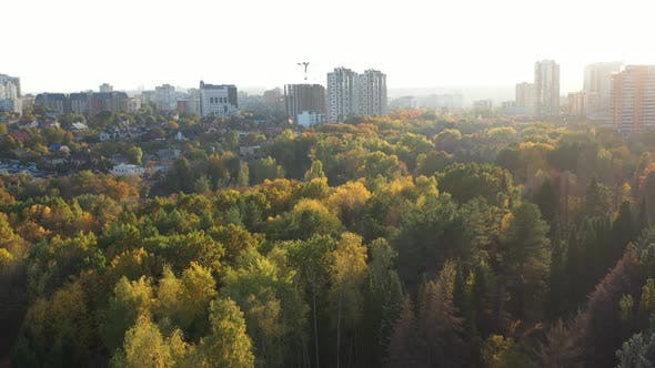 Huge Beautiful Autumn City Park and High Buildings on the Background. Multicolored Fall Trees in