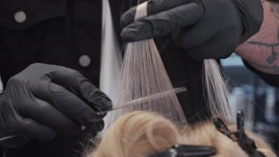 Hairdresser Combing Woman'S Hair In Salon