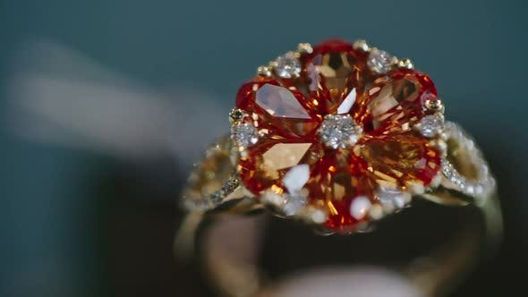 Thumbnail for Flower Ring on Luxury Shop Display
