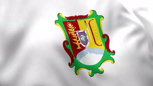 Nayarit Flag (Mexico) - 4K