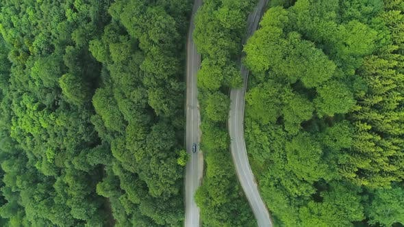 Thumbnail for Black Suv Driving Down a Curvy Forest Road