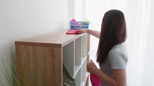 Clear Home Interior Enjoying Cleaning Furniture
