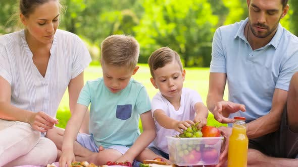 Thumbnail for Happy Family Eating Fruits on Picnic at Park