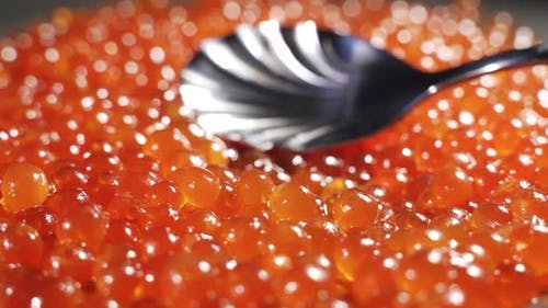 Spreads Red Caviar