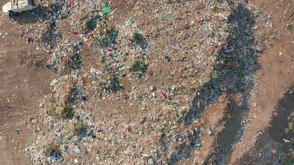 Thumbnail for The Huge Garbage Dump, the Ecological Disaster of Our Planet