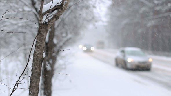 Thumbnail for Snow Blizzard