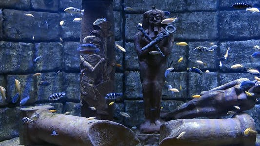 Thumbnail for Underwater And Ancient Egypt Statues