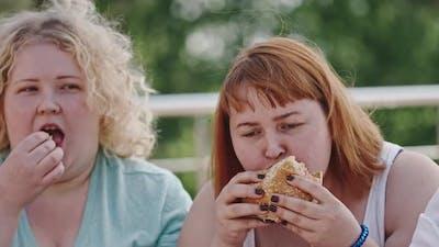 Obesity through Fast Food