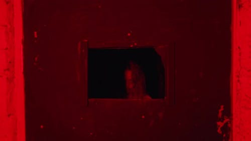 Horror Acting a Woman in a Straitjacket Standing Behind the Door in Mental Hospital and Looking