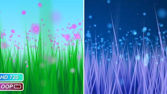 Cover Image for Blue underwater algae