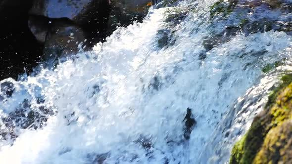 Thumbnail for Close Up Showing Water Rush Down Small Rapids Into Stream