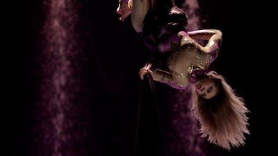 Aerial Silk Gymnast