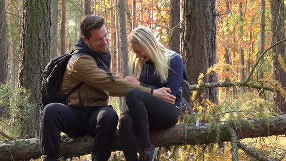Thumbnail for A Hiking Couple Sits on a Broken Tree in a Forest and Tickles Each Other