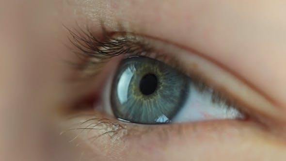 Thumbnail for Human Eye Close-Up