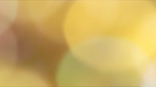 Thumbnail for Yellowish Bokeh Background 03