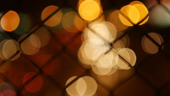 Cover Image for Bokeh In Cage Highway