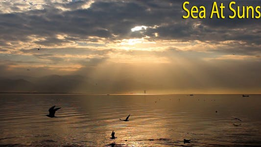 Cover Image for Sea At Sunset