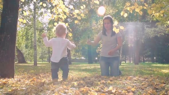 Thumbnail for Little Baby Learning to Walk in Park