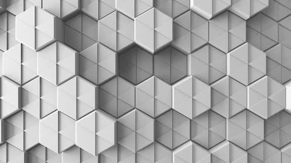White Hexagon Background