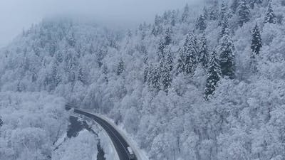 Aerial shot: buses are driving by the road in winter forest.