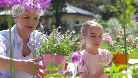 Thumbnail for Grandmother and Girl Planting Flowers at Garden 16