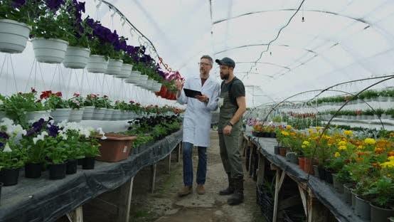 Thumbnail for Gardeners Walking in Greenhouse