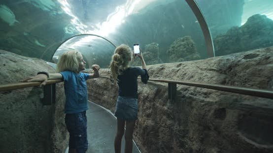 Thumbnail for Girl Talking Photos with Little Brother in Glass Tunnel in Oceanarium