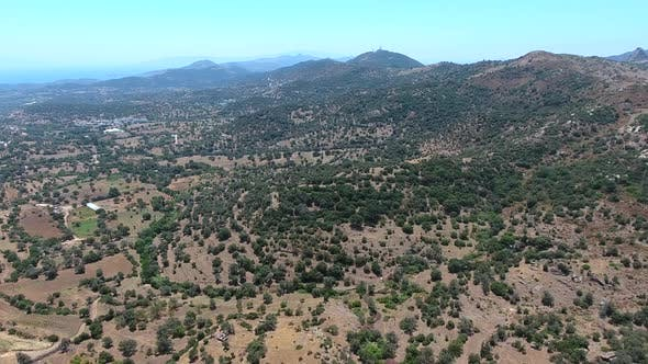 Olive Groves Over the Mountains in Mediterranean Geography