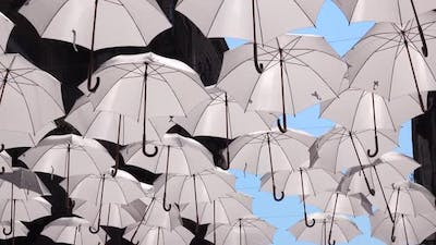 White Umbrellas Are Hanging on Rope Between Old Buildings, Swaying By the Wind. Umbrella Sky Project