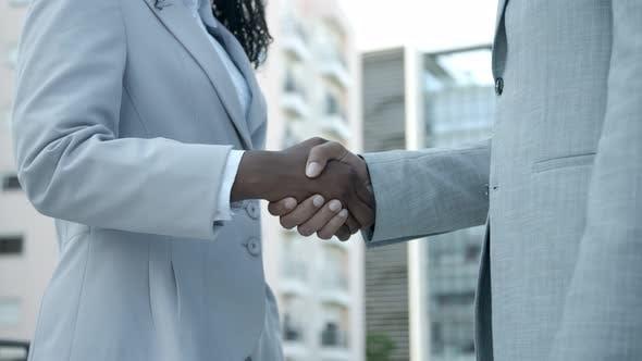 Thumbnail for Closeup Shot of Business Handshake