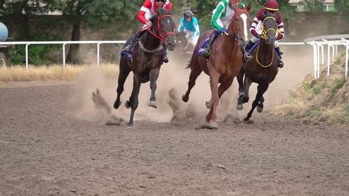 The Horses with the Jockeys at the Racetrack