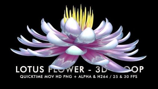 Thumbnail for Lotus Flower