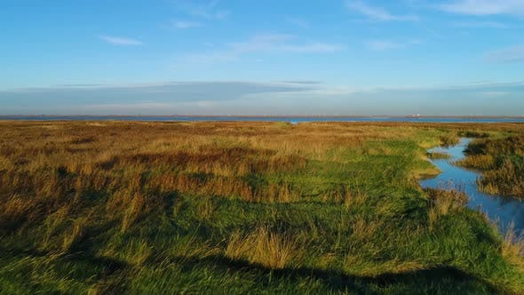 Thumbnail for Aerial view above of wide wetland ecosystem near the ocean, Netherlands.
