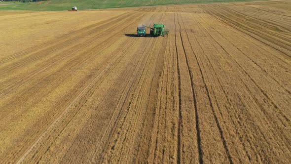 Thumbnail for Aerial View of Wheat Harvesting with Modern Combine. The Combine Harvester Unloads the Grain Into