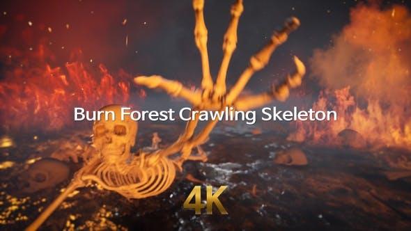 Burn Forest Crawling Skeleton 4K