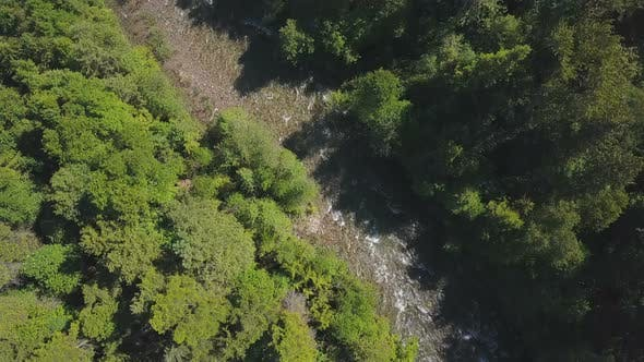 Thumbnail for Aerial Drone Topical View Showing Rushing Water Rapids Between Evergreen Forest 2