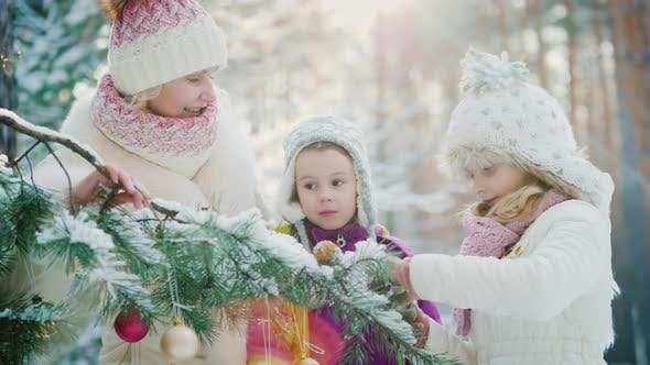 Thumbnail for A Cheerful Family Decorates a New Year Tree in a Winter Park, Have Fun Waiting for Christmas