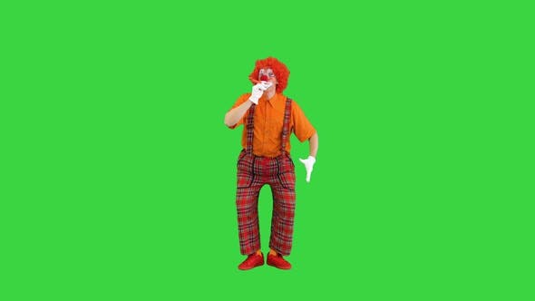 Thumbnail for Clown with Red Nose Blowing Party Horn on a Green Screen Chroma Key