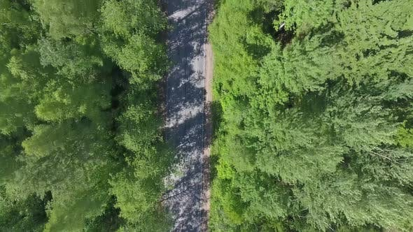 Thumbnail for Aerial Top View of Road Through Forest in Summer