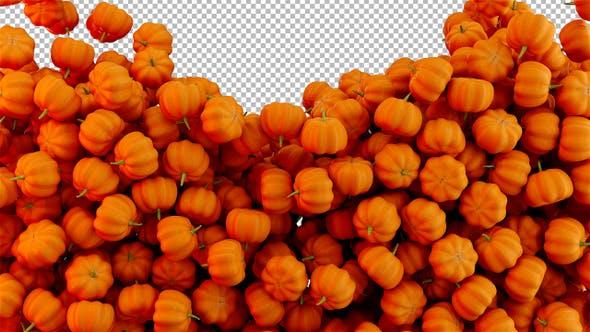 Thumbnail for Falling Pumpkins Transition