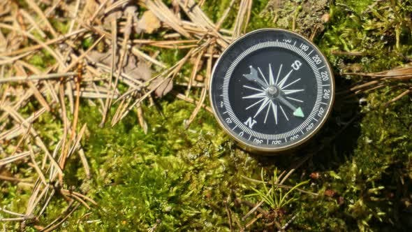Thumbnail for Traveller Compass on the Grass in the Forest