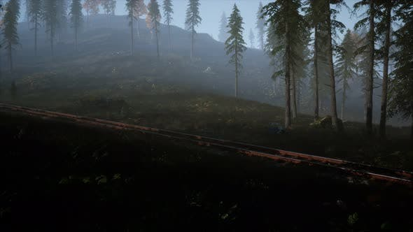 Thumbnail for National Forest Recreation Area and the Fog with Railway